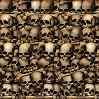 Insta-Theme Wall Mural - Catacombs