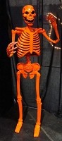 Standing Skeleton - Orange