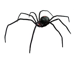 "24"" Black Widow Spider"