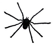 Small 2 Ft Black Spider