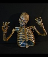 Half Body Mummified Skeleton