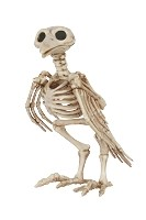 Crazy Bonez Skeleton Crow Prop