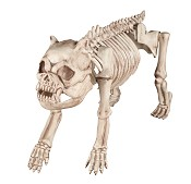 Crazy Bonez Skeleton Dog Prop