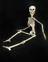 Eddie Skeleton - 3 Feet Tall