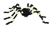 4 ft Medium Green and Black Spider