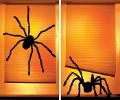 WOWindows Shady Spiders