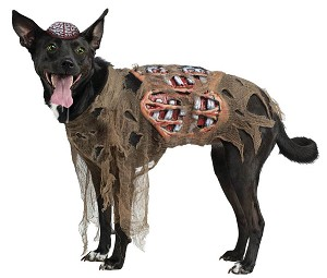 Zombie Dog Pet Costume