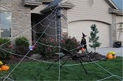 23 Foot Mega Yard Web