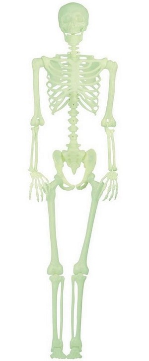 5 Ft Pose N Stay Glow in Dark Skeleton