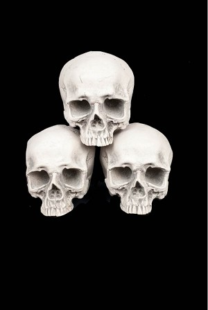 Hollow Half - Skulls - Set of 3