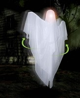Hanging Sonic Rotating Ghost