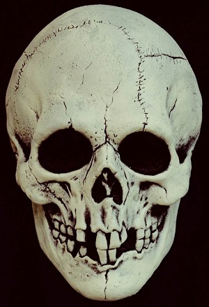 Nightowl Bone Skull Mask