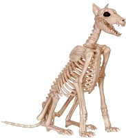 Skeleton Doberman Prop