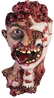 Rotted Zombie Head