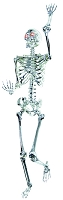 Chrome Pose N Stay Skeleton