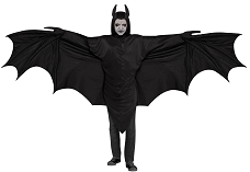 Wicked Wing Bat Costume