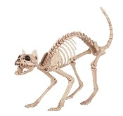 Crazy Bonez Skeleton Cat Prop