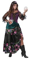 Mystical Charmer Adult Costume- Large