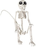 23 inch Monkey Skeleton